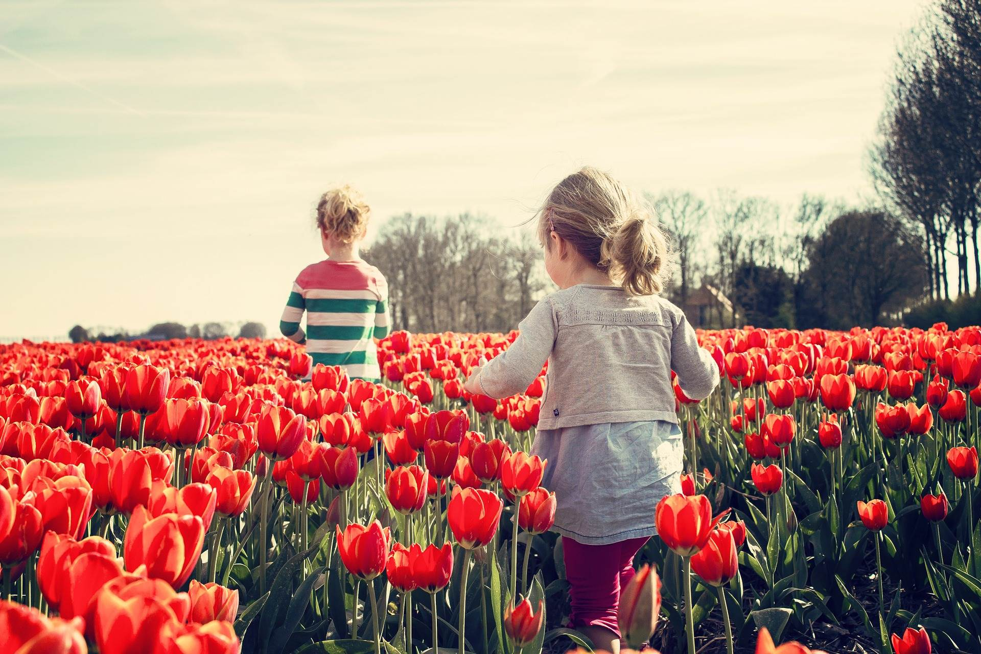 Top things to do with kids in the Amsterdam Area