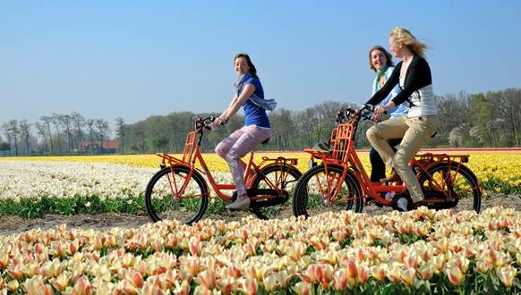 Visiting - Your official guide to Amsterdam | I amsterdam