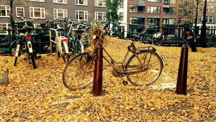 Autumn bike Amsterdam