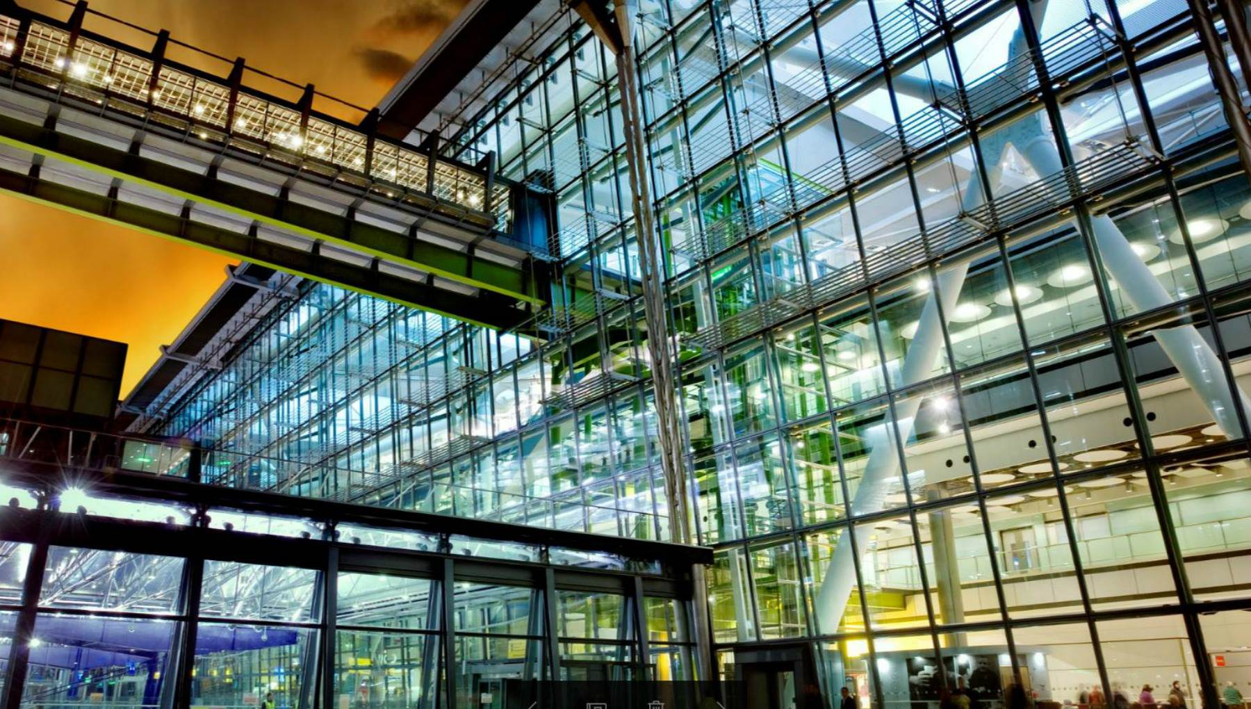 5 Dutch companies building a sustainable future | I amsterdam