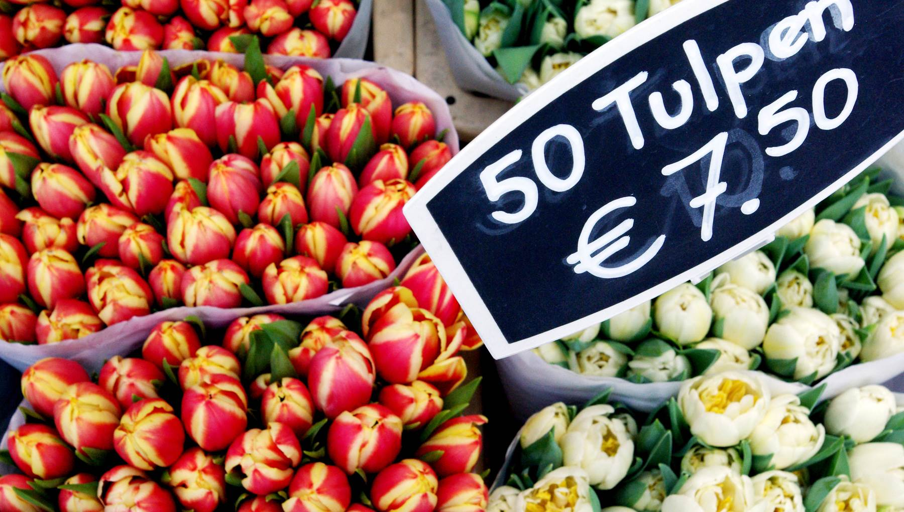 Amsterdam tulips shop market, CC BY 2.0 Lali Masriera via Flickr