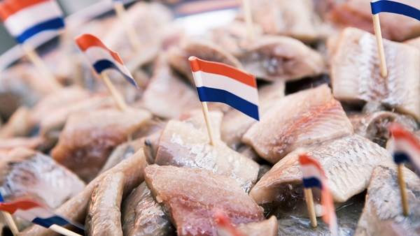 Amsterdam Holland herring